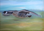 "Eileen Mulrooney Grey goose Artisan oil on canvas 50 x 70cm  2015 • <a style=""font-size:0.8em;"" href=""http://www.flickr.com/photos/41385418@N07/25189085325/"" target=""_blank"">View on Flickr</a>"
