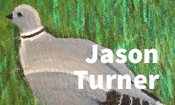 Json Turner